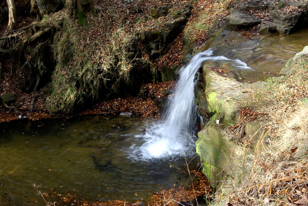 Waterfall - River Rye by Trevor Kersley