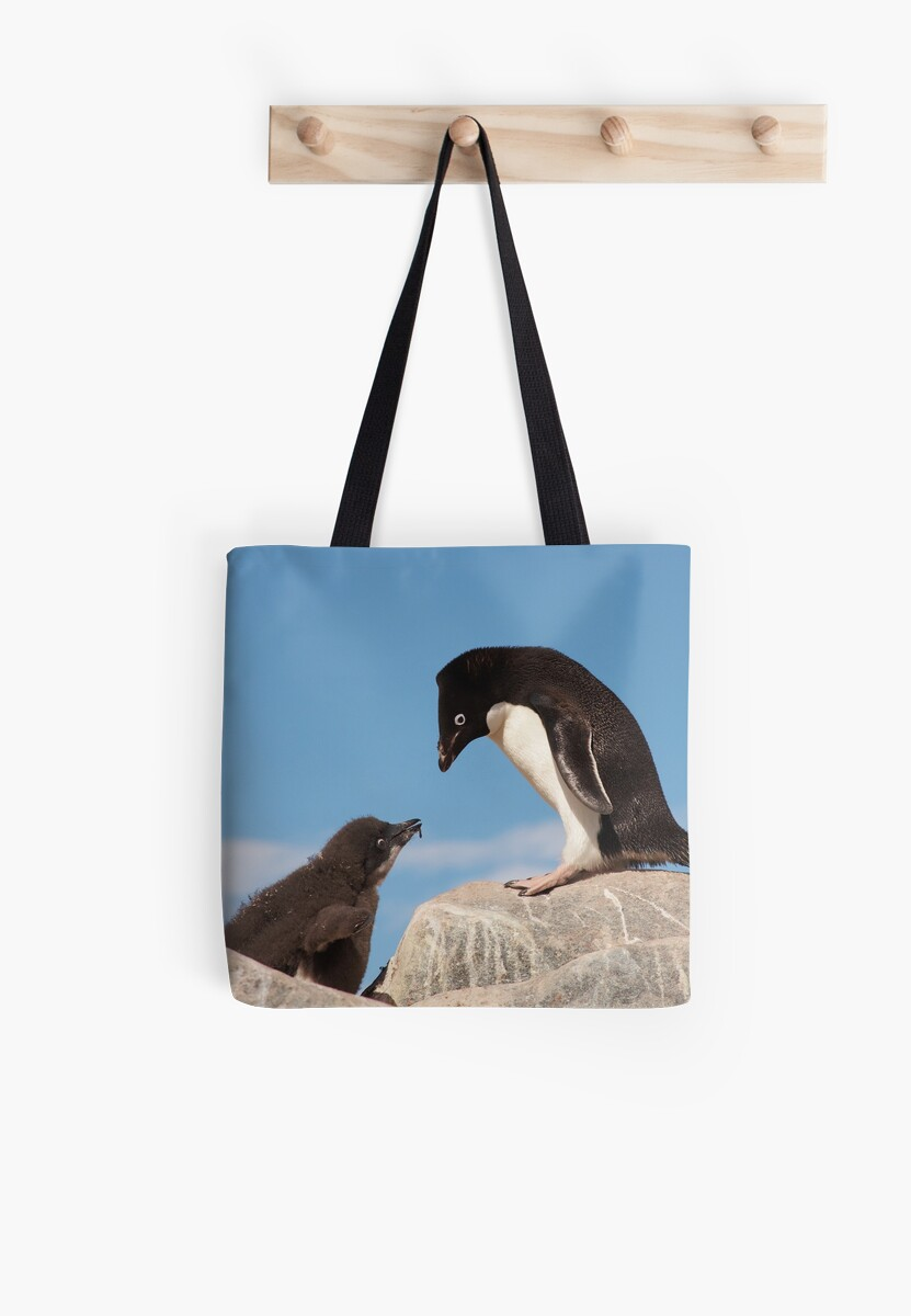 "Adelie Penguin and Chick ~ ""Well......if you say so dad"" by Robert Elliott"