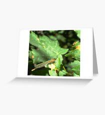 Crawley, flighty, icky thing. Greeting Card