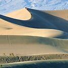 Sand Dunes by Anne-Marie Bokslag