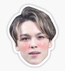 Vernon Seventeen  Sticker