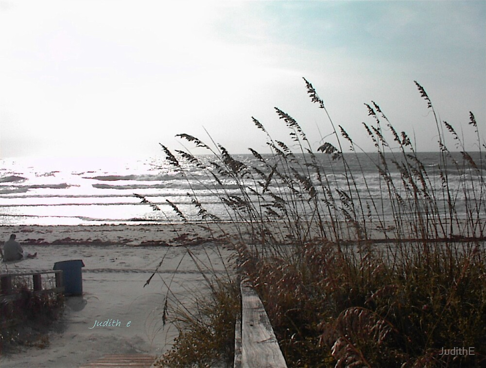 Wind on the Surf by JudithE