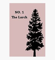No. 1 - The Larch Photographic Print