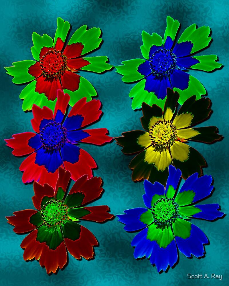 Flower pop by Scott A. Ray