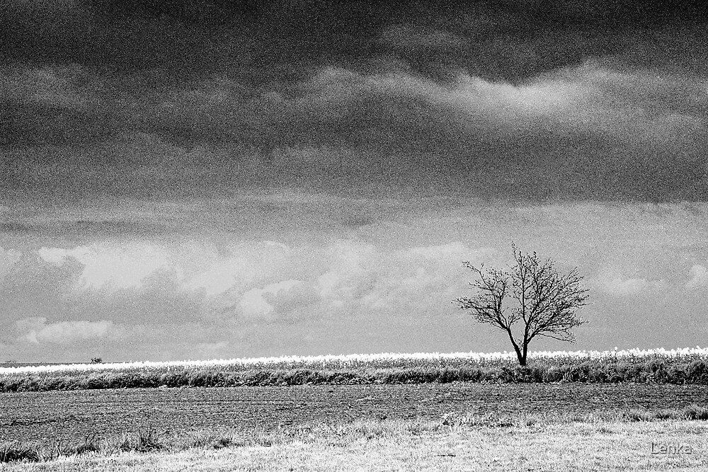 Standing alone by Lenka