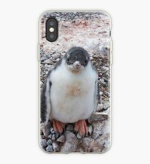 "Gentoo Penguin Chick ~ ""My life's goal....to grow into my feet!"" iPhone Case"