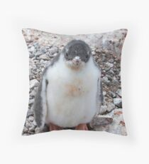"Gentoo Penguin Chick ~ ""My life's goal....to grow into my feet!"" Throw Pillow"