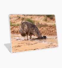 Emu ~ Drink with your back to the Wind Laptop Skin