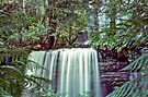 Tasmania's Russell Falls by BRogers