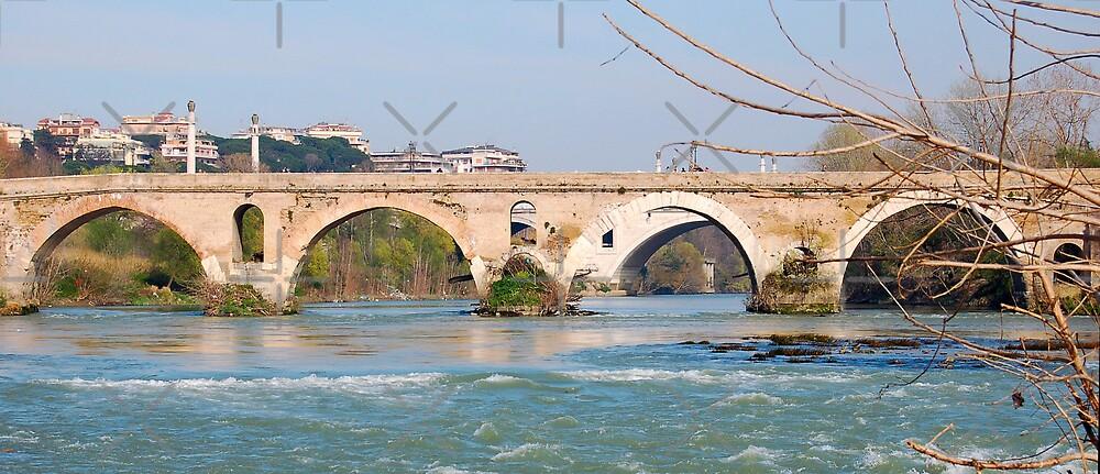 Ponte Milvio by monica palermo