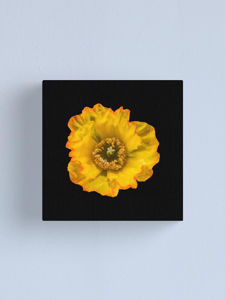 Alternate view of Yellow Poppy Canvas Print