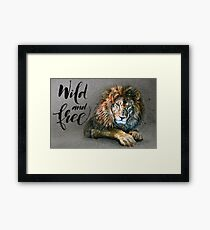 Lion Wild and Free background Framed Print