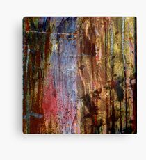 Patina Canvas Print