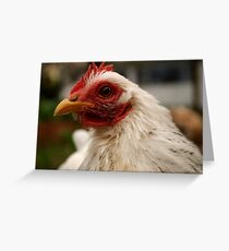 Floortje the chook Greeting Card