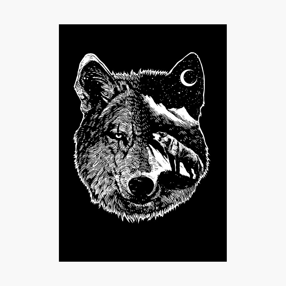 Night wolf Photographic Print