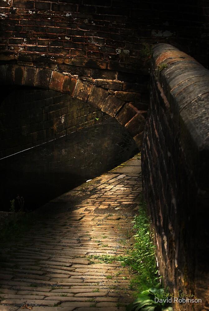 Under the bridge by David Robinson
