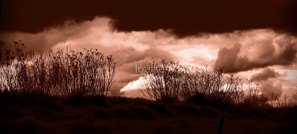 tempestuous by louise