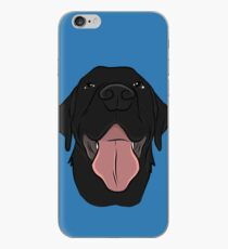 Happy Black Lab iPhone Case