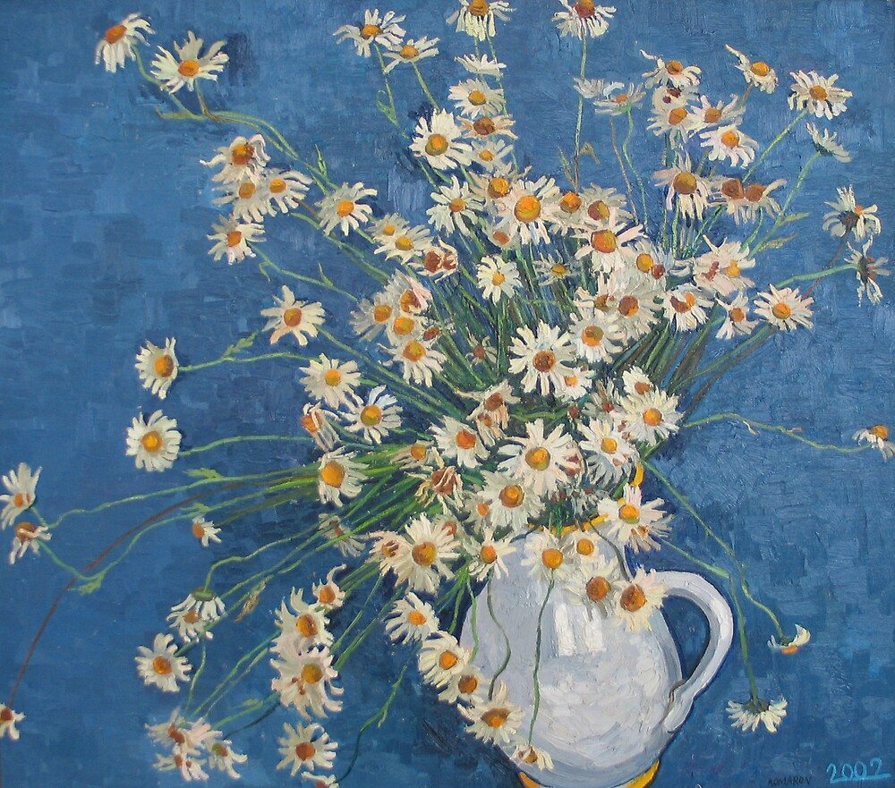 White chamomile flowers with blue background by Vitali Komarov