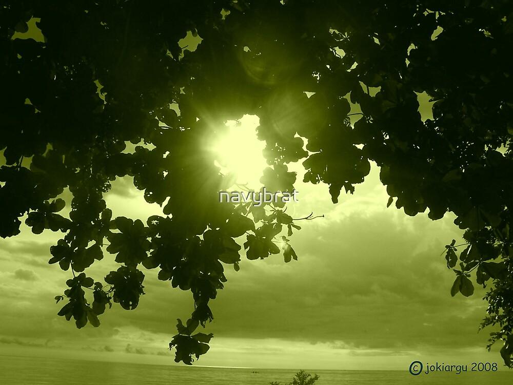 green day by navybrat