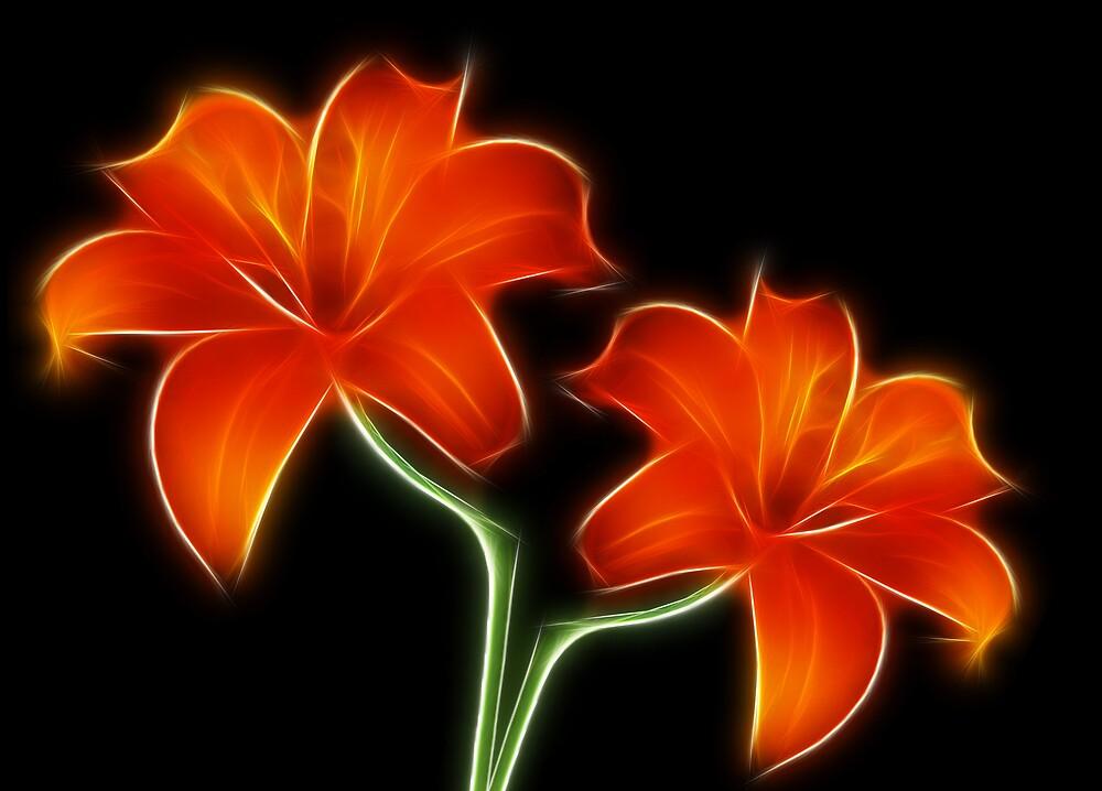 Two Lilies by Mikhail Palinchak