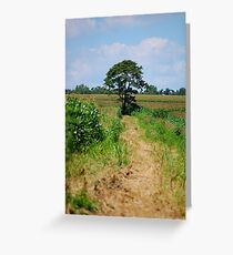 not evey path you save takes you home, but sometimes, just that special place. Greeting Card