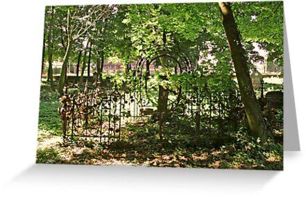 The Gate by Kagara