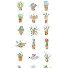 Succulentica by Lunta