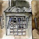 boboli window by scott myst