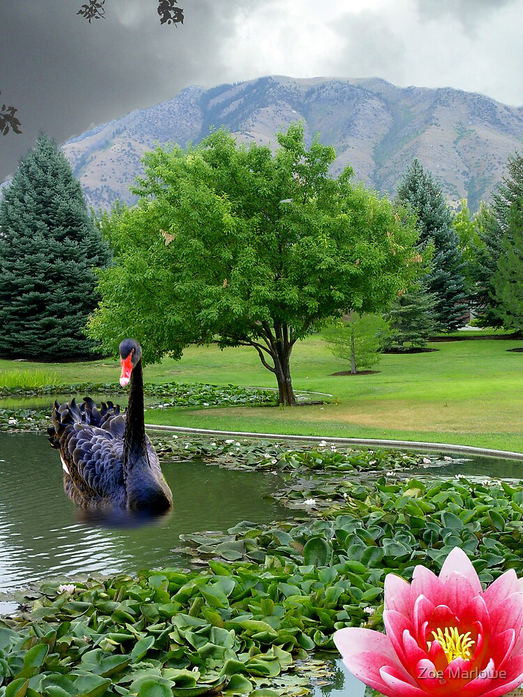 Cloudy Afternoon On The Lily Pond by Zoe Marlowe