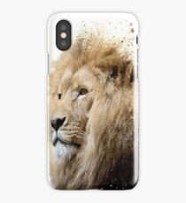 dispersion lion  iPhone Case/Skin