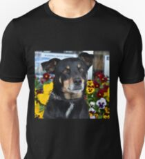 Beautiful Bitzer and the Pansies  T-Shirt