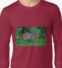Deer By The Road T-Shirt