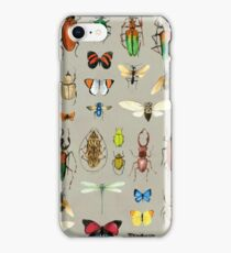 The Usual Suspects - Insects on grey iPhone Case/Skin