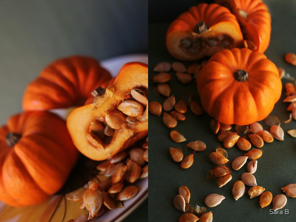 Pumpkins by Sara B