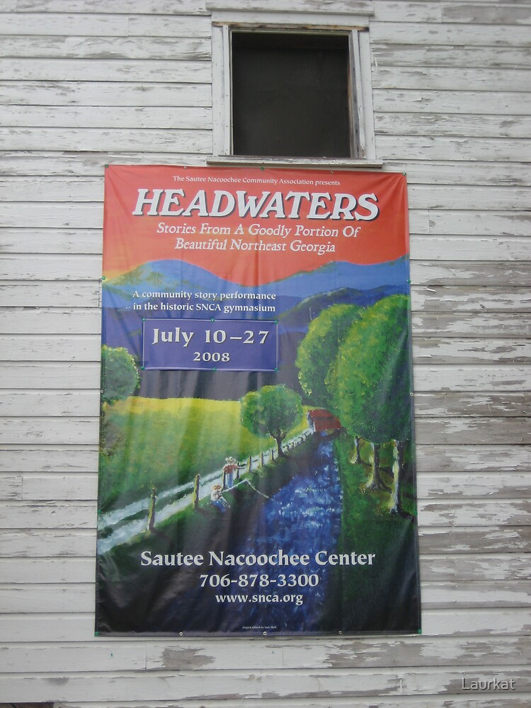 Headwaters poster by Laurkat