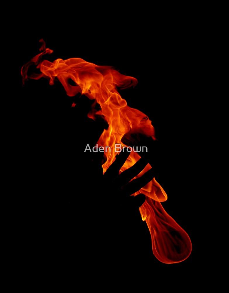 Feeling the Heat by Aden Brown