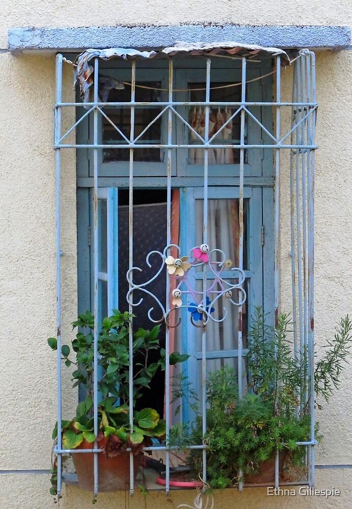 Blue Window  by Ethna Gillespie