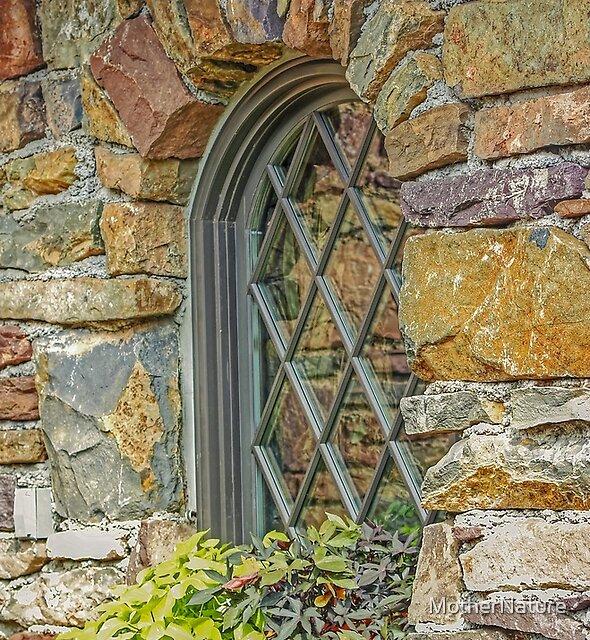 Ott's Window Garden by MotherNature