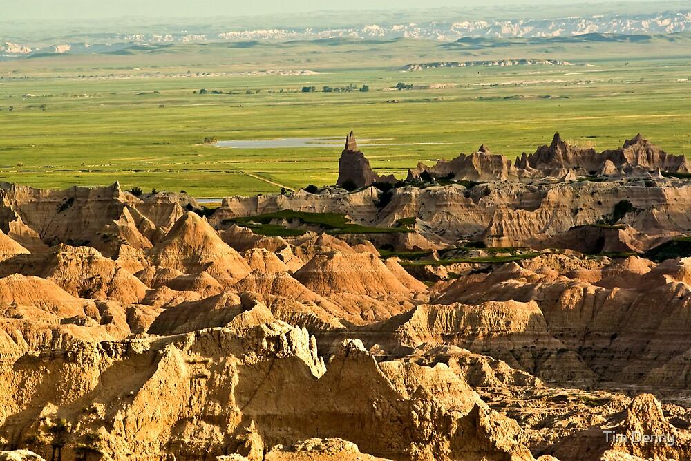 ~ South Dakota Badland Wilderness ~ by Tim Denny