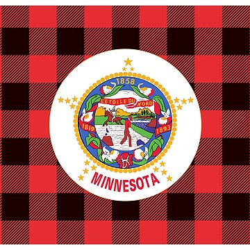 Minnesota Unofficial Flag by In-Situ