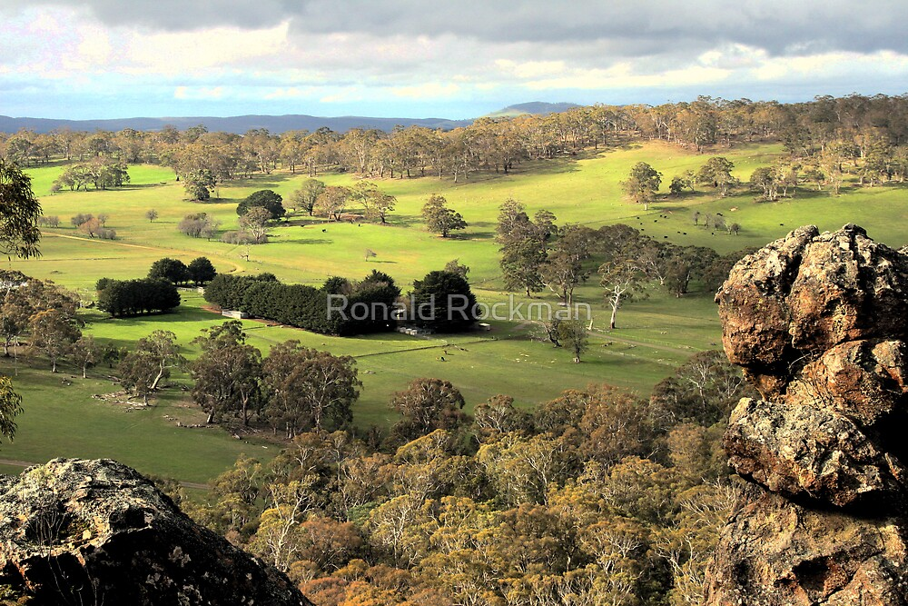 View From The Summit Of Hanging Rock by Ronald Rockman