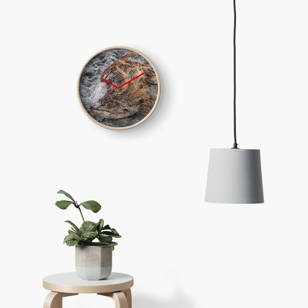 A sad coconut Clock