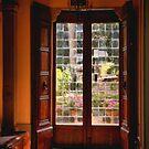 Door to the Garden by Barbara  Brown