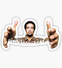 Ben Harper, HANDS Sticker