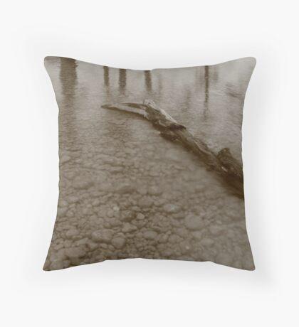 passage Throw Pillow