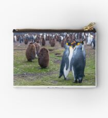 King Penguins on the Falkland Islands Studio Pouch