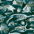 Fish Bone Yard by adamcampen