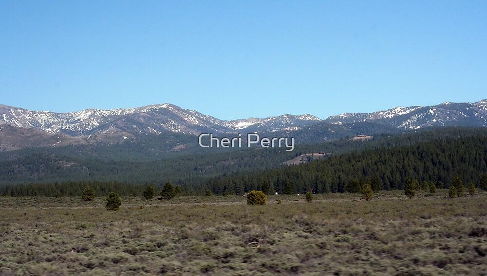 Sierra Mountains, Nevada VI by Cheri Perry