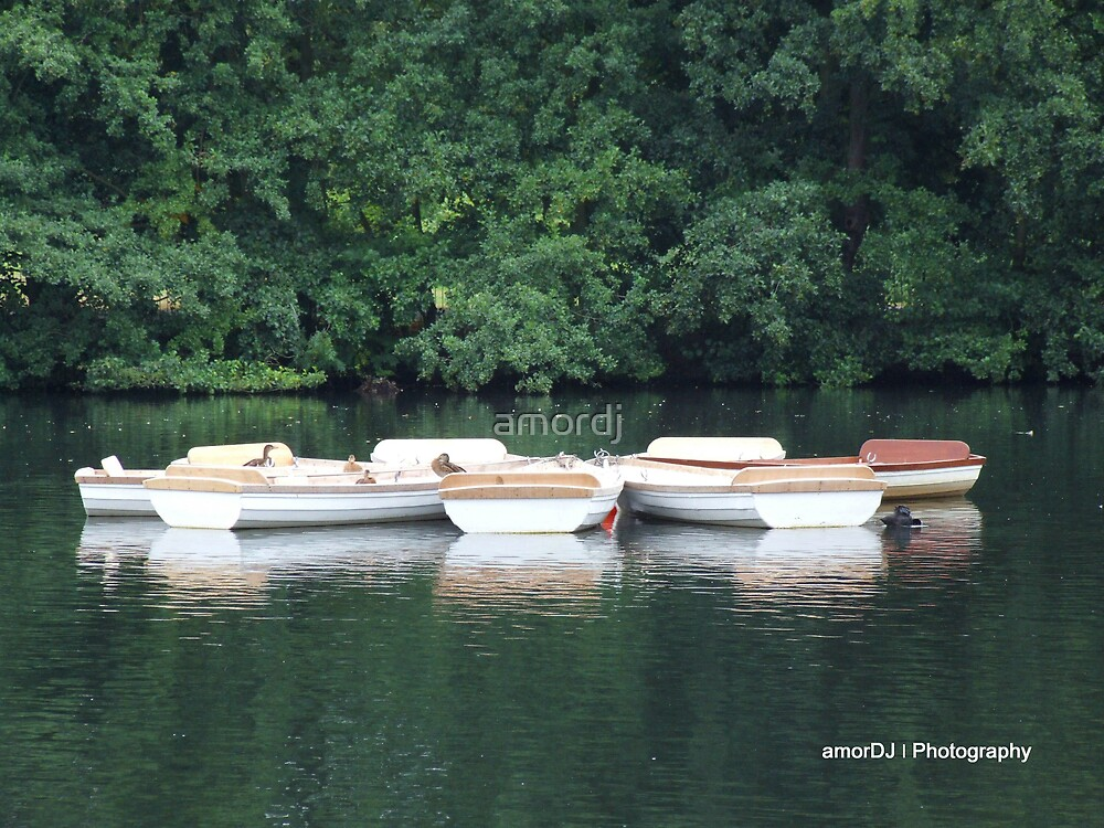 Boat Hire by amordj